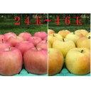 【ふるさと納税】8〜11月【訳あり】季節のりんご・採れたて!10kg【弘前市産・青森りんご】 【果物類・林檎・りんご・リンゴ・10kg】 お届け:2021年8月20日〜11月15日