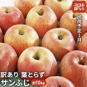 【ふるさと納税】1月 訳あり 美味 葉とらずサンふじ約10k