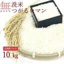 【ふるさと納税】【5ヶ月】乾式無洗米つがるロマン10kg(精