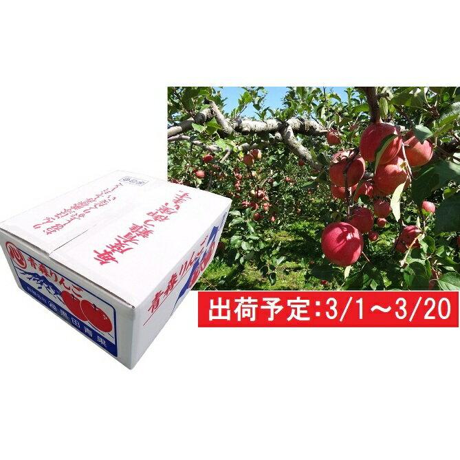 3月 津軽産 家庭用サンふじ約10kg [果物・フルーツ・くだもの・林檎・リンゴ] お届け:2020年3月1日〜2020年3月20日