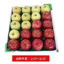 【ふるさと納税】【年明け】津軽産紅白りんご約5kg(サンふじ...