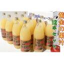 【ふるさと納税】青森県産完熟100%アップルジュース1L×1...