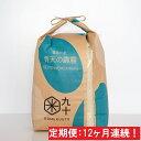 【ふるさと納税】【12ヶ月】特A・一等米 青天の霹靂5kg(...