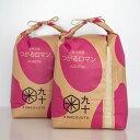 【ふるさと納税】一等米 青森県産 つがるロマン10kg(精米・5kg×2袋) 【お米】