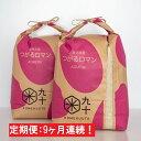 【ふるさと納税】【9ヶ月】一等米 つがるロマン10kg(精米...