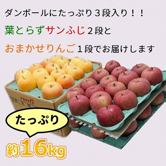 【年内】サンふじ葉とらず林檎&おまかせ1品種約16kg(計2品種)
