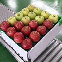 【ふるさと納税】りんご 青森産 約5kg サンふじ 王林 他(紅白)【2021年1月から順次発送】 【林檎・りんご・リンゴ・果物類・フルーツ・詰合せ】 お届け:2021年1月5日〜2021年3月31日