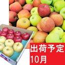 【ふるさと納税】りんご 青森産 約5kg 【10月発送】品種おまかせ2種以上 贈答用 特選〜特秀 【果物類・林檎・りんご・リンゴ・果物類・フルーツ・詰合せ】 お届け:2021年10月1日〜2021年10月31日