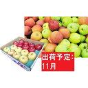 【ふるさと納税】11月 贈答用 青森のおまかせりんご約5kg...