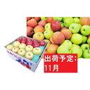 【ふるさと納税】【訳あり】 りんご 約10kg 青森産 【1...