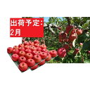 【ふるさと納税】【訳あり】 りんご 約10kg サンふじ 青...