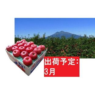 【ふるさと納税】りんご 約10kg サンふじ 青森産 糖度 13度以上 【3月発送】 贈答用 特選〜特秀 【果物類・林檎・りんご・リンゴ・くだもの】 お届け:2021年3月1日〜2021年3月20日の画像