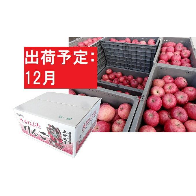 [訳あり] りんご 約10kg サンふじ 青森産 [12月発送]36〜40個入 [果物類・林檎・りんご・リンゴ] お届け:2020年12月1日〜2020年12月20日
