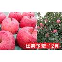 【ふるさと納税】12月 りんご 青森産 約3kg 最高等級「特選」有袋ふじ 【果物類・林檎・りんご・リンゴ】 お届け:2020年12月1日〜2020年12月28日