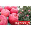 【ふるさと納税】1月 りんご 青森産 約3kg 最高等級「特選」有袋ふじ 【果物類・林檎・りんご・リンゴ】 お届け:2021年1月12日〜2021年1月31日