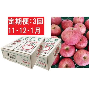 【ふるさと納税】【訳あり】りんご 10kg×3回(5kg×2箱×3回)【定期便3回11・12・1月】青森産 サンふじ 【定期便・果物類・林檎・りんご・リンゴ】 お届け:2020年11月10日〜2021年1月31日