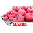 【ふるさと納税】5月 冷た〜い最高等級 「特選」 ふじりんご 約3kg 【青森りんご・有袋栽培・CA貯蔵・クール便】 【果物類・林檎・りんご・リンゴ】 お届け:2021年5月10日〜2021年5月31日