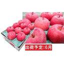 【ふるさと納税】6月 冷た〜い最高等級 「特選」 ふじりんご 約3kg 【青森りんご・有袋栽培・CA貯蔵・クール便】 【果物類・林檎・りんご・リンゴ】 お届け:2021年6月1日〜2021年6月30日
