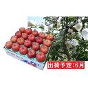 【ふるさと納税】6月 【訳あり】冷た〜い 家庭用 ふじりんご 約5kg 【青森りんご・有袋栽培・CA貯蔵・クール便】 【果物類・林檎・りんご・リンゴ・ふじりんご・約5kg・訳あり 】 お届け:2021年6月1日〜2021年6月30日