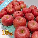 【ふるさと納税】【訳あり】 6月 りんご 10kg程度 青森産 有袋ふじ 【果物類・林檎・りんご・リンゴ・約10kg・訳あり】 お届け:2021年6月1日〜2021年6月30日