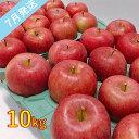 【ふるさと納税】【訳あり】 7月 りんご 10kg程度 青森産 有袋ふじ 【果物類・林檎・りんご・リンゴ・約10kg・訳あり】 お届け:2021年7月1日〜2021年7月20日