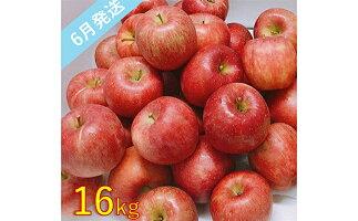 【ふるさと納税】【訳あり】6月りんご16kg程度青森産有袋ふじ【果物類・林檎・りんご・リンゴ・約16kg・訳あり】お届け:2021年6月1日〜2021年6月30日