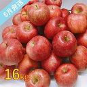 【ふるさと納税】【訳あり】 6月 りんご 16kg程度 青森産 有袋ふじ 【果物類・林檎・りんご・リンゴ・約16kg・訳あり】 お届け:2021年6月1日〜2021年6月30日