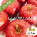 【ふるさと納税】【先行予約】11月 旬の美味しいりんご特選約5kg【おまかせ1品種】【青森りんご】 【果物類・林檎・りんご・リンゴ・フルーツ・約5kg】 お届け:2021年11月1日〜2021年11月30日