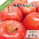 【ふるさと納税】【先行予約】【訳あり】11月 旬の美味しいりんご約5kg【おまかせ1品種】【青森りんご】 【果物類・林檎・りんご・リンゴ・訳あり・フルーツ・約5kg】 お届け:2021年11月1日〜2021年11月30日