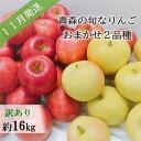 【ふるさと納税】【先行予約】【訳あり】11月 旬の美味しいりんご約16kg【おまかせ2品種】【青森りんご】 【果物類・林檎・りんご・リンゴ・訳あり・フルーツ・約16kg】 お届け:2021年11月1日〜2021年11月30日