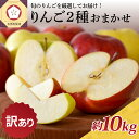 【ふるさと納税】※選べる 配送時期※【訳あり】 りんご 約10kg 青森産 品種おまかせ2種以上