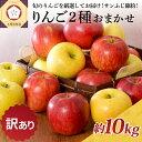 【ふるさと納税】【訳あり】 りんご 10kg サンふじ 確約