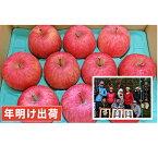 【ふるさと納税】年明け 親子三代最高位のサンふじ約3kg家庭用 【果物類・林檎・りんご・リンゴ】 お届け:2020年1月10日〜2020年3月31日