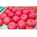 【ふるさと納税】4月 CA貯蔵サンふじ約5kg 平川市産 【果物類・林檎・りんご・リンゴ】 お届け:2020年4月1日〜2020年4月24日