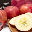 【ふるさと納税】年内 蜜入り 糖度保証サンふじ 約3kg 【JA津軽みらい・平川市産・青森りんご・12月】 【果物類・林檎・りんご・リンゴ】 お届け:2021年12月1日〜2021年12月25日
