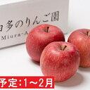【ふるさと納税】年明け 贈答用 サンふじ 約3kg(糖度証明書付き) 【那由多のりんご園・平川市産・1月・2月】 【果物類・林檎・りんご・リンゴ】 お届け:2022年1月10日〜2022年2月28日