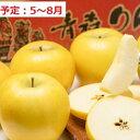 【ふるさと納税】5〜8月 贈答規格 親子三代最高位のシナノゴールド約3kg【全国ふじコンテスト第一席・スマートフレッシュ貯蔵・青森りんご】 【果物類・林檎・りんご・リンゴ・シナノゴールド・約3kg】 お届け:2021年5月10日〜2021年8月8日