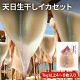 【ふるさと納税】青森県鰺ヶ沢町 生干しイカ 5枚セット ※お申込みから3ヶ月以内の発送になります。青森 イカ いか 国産 魚介 【魚貝類・イカ・魚貝類・イカ】