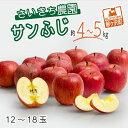 【ふるさと納税】[青森県産りんご]さいきち農園のサンふじ約4〜5kg(12〜18玉) 【果物類・林檎・りんご・リンゴ・くだもの】 お届け:2021年11月10日〜2022年1月10日