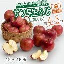【ふるさと納税】[青森県産りんご]さいきち農園のサン早生ふじ(弘前ふじ)約4〜5kg(12〜18玉) 【果物類・林檎・りんご・リンゴ・くだもの】 お届け:2021年10月1日〜10月10日