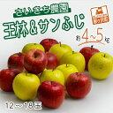 【ふるさと納税】さいきち農園のサンふじ・王林セット 約4〜5kg(12〜18玉) 青森県鰺ヶ沢町産りんご 【果物類・林檎・りんご・リンゴ・果物類・フルーツ・詰合せ】 お届け:2021年11月15日〜2022年1月10日