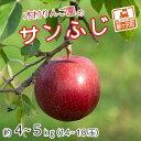 【ふるさと納税】[青森県産りんご]木村りんご園のサンふじ約4〜5kg(14〜18玉) 【果物類・林檎・りんご・リンゴ】 お届け:2021年11月10日〜2022年1月10日
