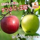 【ふるさと納税】[青森県産りんご]木村りんご園のサンふじ・王林セット約4〜5kg(14〜18玉) 【果物類・林檎・りんご・リンゴ】 お届け:2020年10月下旬〜12月25日