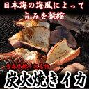 【ふるさと納税】青森県鰺ヶ沢町 炭火焼きイカ 3パックセット...