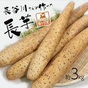 【ふるさと納税】長谷川さんが作った長芋(約3kg) 【野菜・根菜】 お届け:毎年9月上旬〜翌年6月下旬お届けです。