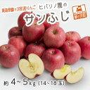【ふるさと納税】青森県鰺ヶ沢町産りんご ヒバリノ園のサンふじ 約4〜5kg(14〜18玉) 【果物類・林檎・りんご・リンゴ】 お届け:2021年11月10日〜2022年1月10日