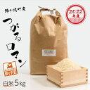 【ふるさと納税】青森県鰺ヶ沢町 2020年産米 つがるロマン 白米 5kg 【お米】