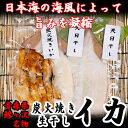 【ふるさと納税】青森県鰺ヶ沢町 生干しイカ2枚、炭火焼きイカ...