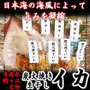 【ふるさと納税】青森県鰺ヶ沢町 生干しイカ 4枚、炭火焼きイ...