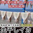 【ふるさと納税】青森県鰺ヶ沢町 生干しイカ 8枚セット ※お...